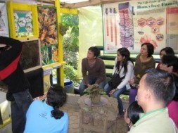 A farm personnel orients visitors regarding the honey production process.